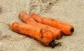 Free Carrots Royalty Free Stock Photos - 28134828