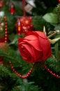 Free Christmas Tree Ornament Stock Photo - 28138960