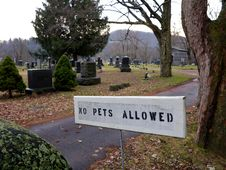 No Pets Allowed In Cemetery Stock Photo
