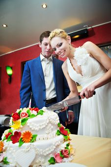 Free Cutting The Cake Newlyweds Royalty Free Stock Photo - 28136495