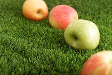 Free Different Apples On Grass Stock Photo - 28142740