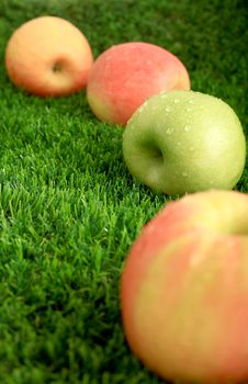 Free Apples On The Grass Stock Image - 28143161