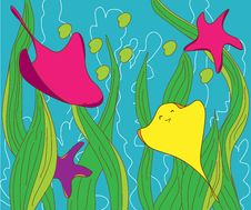 Free Fishes And Stars Under Sea Royalty Free Stock Photo - 28143465