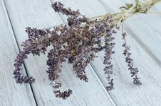Free Dried Lavender On Wooden Background Stock Images - 28146774