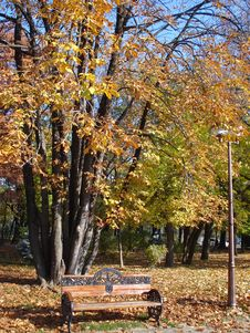 Autumn In The Park Stock Images
