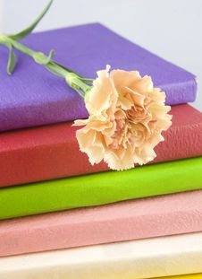 Free Books With Flower Royalty Free Stock Image - 28152656