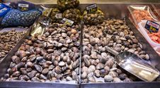 Free Clams At Marketplace Stock Images - 28157144