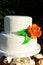 Free Simple White Wedding Cake Royalty Free Stock Images - 28152759