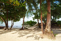 Free Hammock On The Beach Royalty Free Stock Images - 28169869