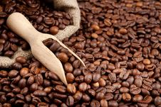 Free Coffee Beans Royalty Free Stock Photos - 28164738