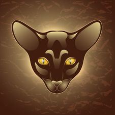 Free Dark Cat Stock Photography - 28168012