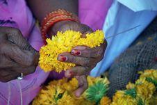 The Flower Seller Stock Image