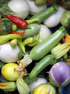 Free Vegetables Royalty Free Stock Photography - 28173397
