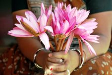 The Flower Seller Royalty Free Stock Image