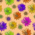 Free Decoration Element. Floral Style. Seamless. Stock Images - 28180234