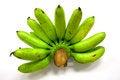Free Organic Green Bananas Stock Image - 28184231