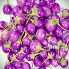 Free Purple Eggplant Stock Photography - 28186832