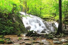 Free Waterfall In The Forest Royalty Free Stock Photography - 28186877