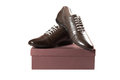 Free Pair Of Brown Male Shoes  On Box Royalty Free Stock Photos - 28198788