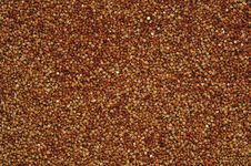 Free Buckwheat Background Or Texture Stock Images - 28191354