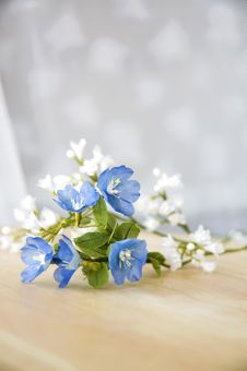 Free Artificial Flowers Stock Photos - 28196503