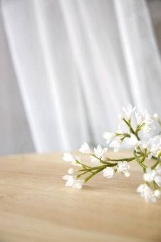 Free Pretty White Artificial Flowers Stock Photo - 28196590
