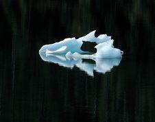 Free Ice Mask Stock Photo - 2823240