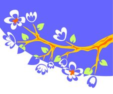 Free Blue Blossoming Branch Stock Images - 2824744