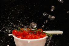 Free Cherry Tomatos 2 Stock Photography - 2826422