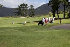 Free Golf Course Stock Photo - 2826940