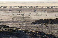 Free Desert Landscape Royalty Free Stock Images - 2828149