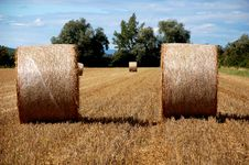 Free Yellow Grain Harvested On A Fa Stock Photo - 2828520