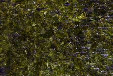 Dry Seaweed For Sushi Royalty Free Stock Image