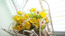 Free Yellow Flower Stock Image - 28209601
