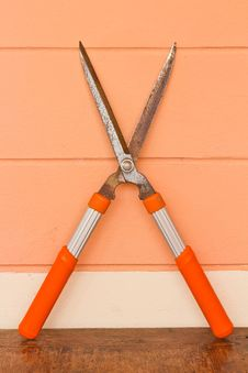 Free Scissors To Cut The Grass Royalty Free Stock Image - 28209606