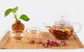 Free Flower Tea Royalty Free Stock Images - 28210289
