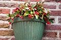 Free Jardiniere Stock Photo - 28213150