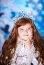 Free Christmas Holiday Royalty Free Stock Image - 28214886