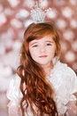 Free Christmas Holiday Stock Photography - 28214922