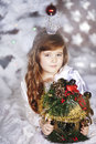 Free Christmas Holiday Stock Photo - 28214950