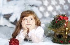 Free Christmas Holiday Royalty Free Stock Photo - 28214965