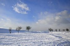 Free Winter Landscape Royalty Free Stock Images - 28218559