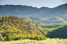 Free Green Hills Of Mountains In The Background. Stock Photography - 28221322
