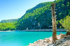 Free Dry Tree Trunk On The Shore Of A Mountain Lake Royalty Free Stock Photos - 28221408