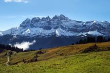 Green Alpine Meadows Stock Images