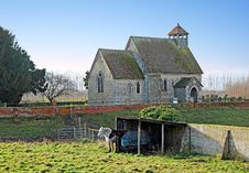 Ancient Saxon Church And Horses Stock Photography