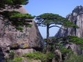 Free Huangshan Chinese Stock Photography - 28250252