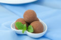 Free Chocolate Truffle With Fresh Mint Stock Photography - 28252972