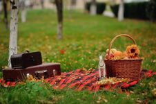 Free Picnic Stock Photos - 28251503