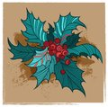 Free Color Christmas Holly Royalty Free Stock Image - 28265616